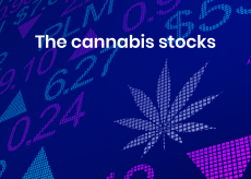 The cannabis stocks that are high on alt data